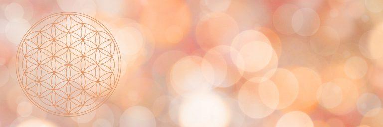 Stimmungsbild verschwommener Hintergrund warme Farben, Vordergrund Blume des Lebens